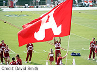 Alabama Crimson Tide by David Smith (flickr/Diamondduste)