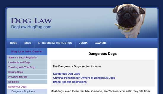 Dog Law with Little Sheba the Hug Pug