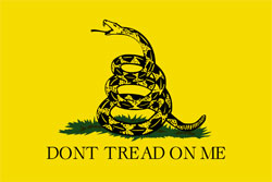 Gadsden Flag by Vikrum Lexicon