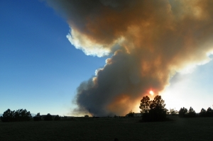 smoke-plume-1428335-m
